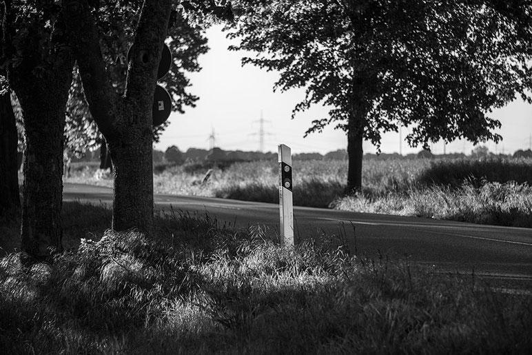 Landstraße schwarzweiß: Triotar 4/13,5 cm für Exakta an Nikon Z7. Foto: bonnescape.de