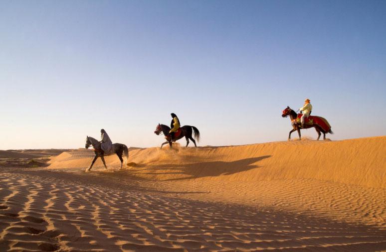 Saulėlydis Ksar Gilano oazėje Tunise Sacharos dykumoje