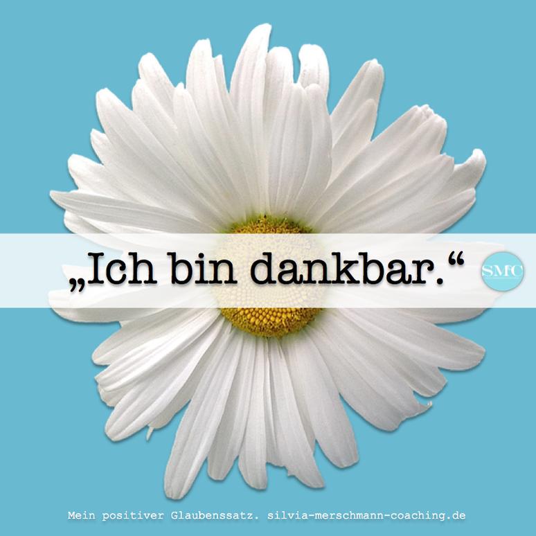 Weiße Blume auf blauem Untergrund. Bild mit Text.