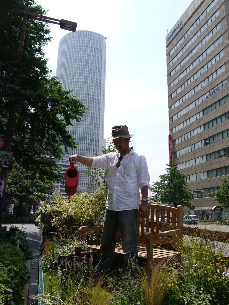 2013 6月 名古屋の都市部にて路上ゲリラガーデン。近代的な都市景観にナチュラルな小さな庭を提供。