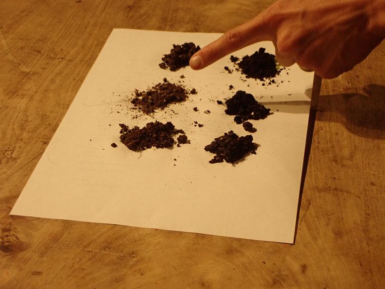 無農薬のプランター栽培の土