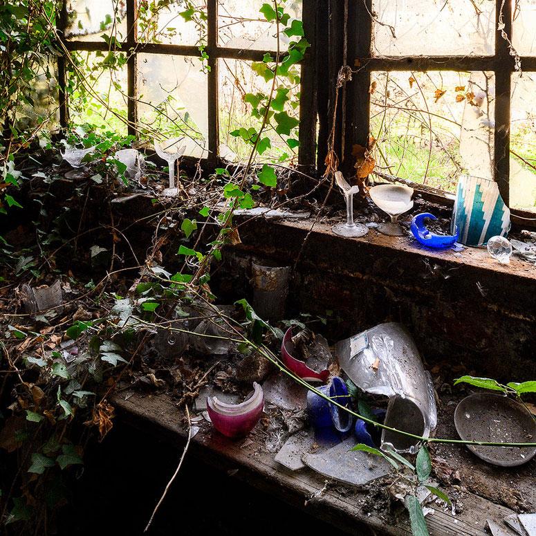 Urbex abandoned place Glasfabrik, von Efeu überwucherte Reste von alten Produktmustern. NIKON Z7, 1:1 Bildfeld quadratisch. NIKKOR PC-E 24 mm, 1:3,5. Foto: Dr. Klaus Schörner