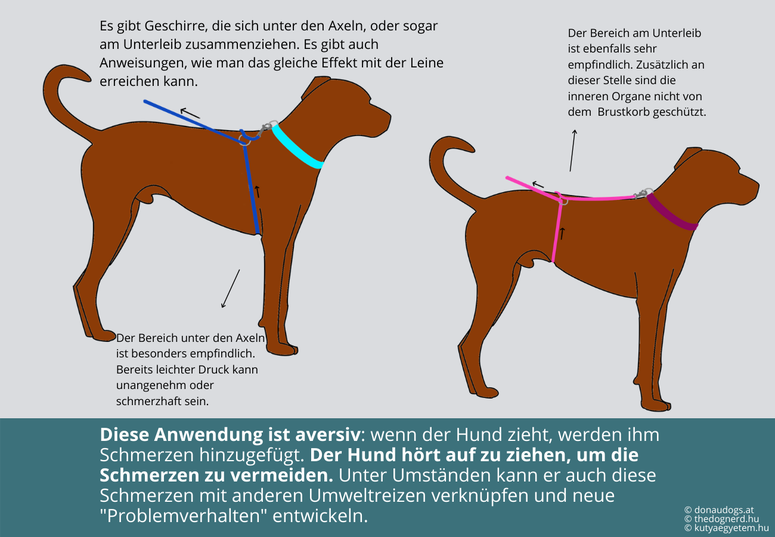 Geschirre, die sich zusammenziehen können die Organe deines Hundes schädigen.