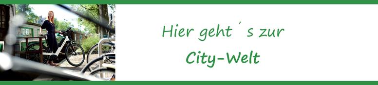 City e-Bike Welt beim Experten in Olten