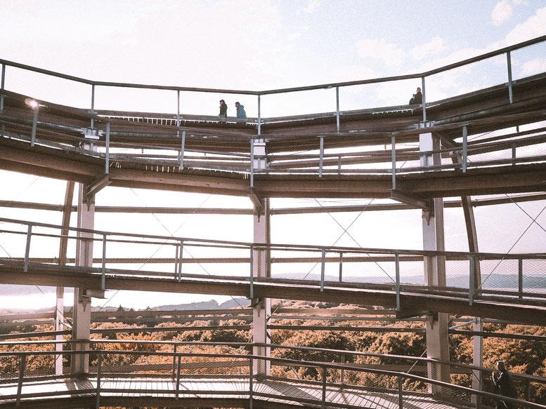 Drehwurmgefahr beim Erklimmen des Adlerhorstes