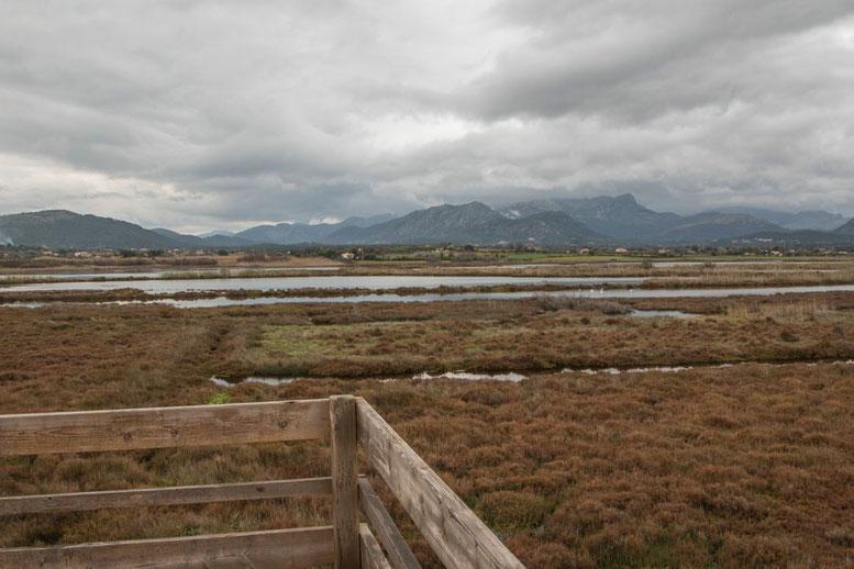 S'Albufereta Natural Reserve