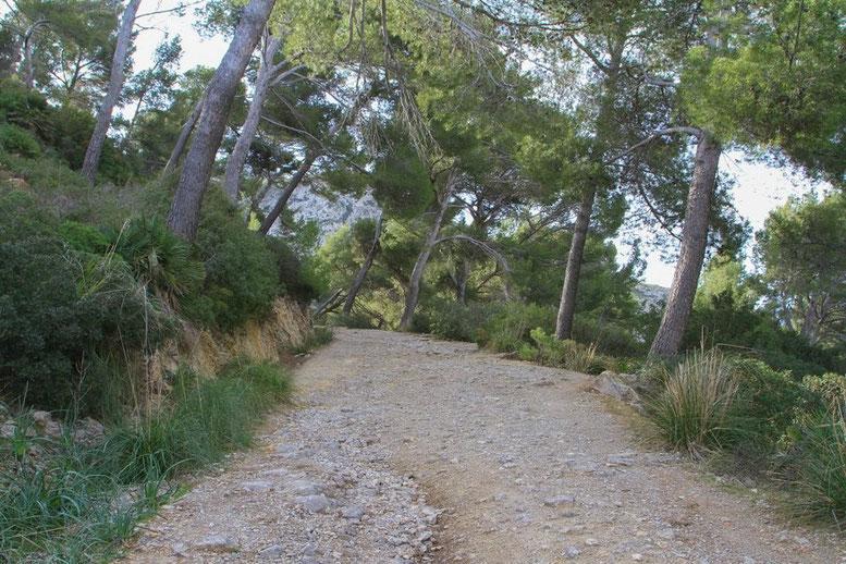 Erster Abschnitt, ein Schotterweg -  Wanderung Talaia d'Alcudia