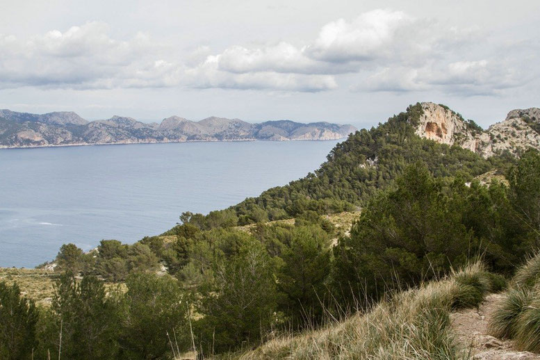 Wanderung Talaia d'Alcudia