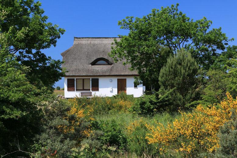 Radtour auf Hiddensee