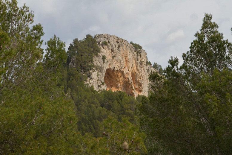 Auf dem Wanderweg Ermita de Victoria - Talaia d'Alcudia