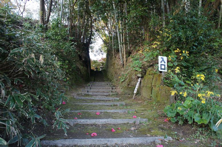 山茶花とつわぶきが苔むした山門跡に色を添えている。奧の石段は手彫り。