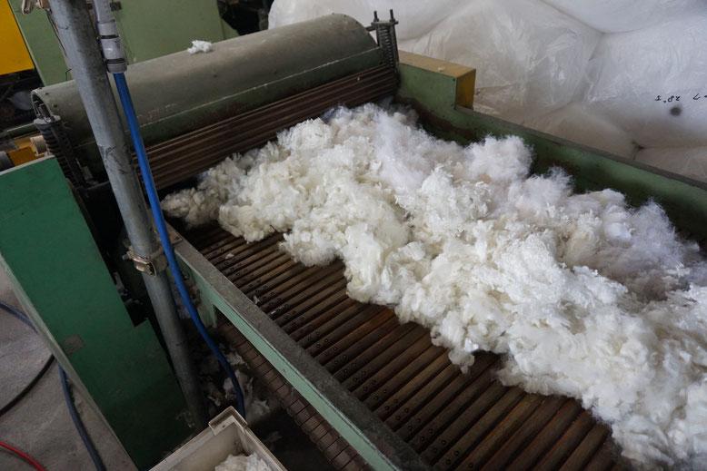 ウール繊維をほぐしながらほこりや牧草などの夾雑物を取り除きます。
