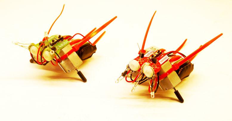 Roboter Vorserie mit gefertigten Platinen und optimiertes Layout  in rot mit Markennamen varikabo