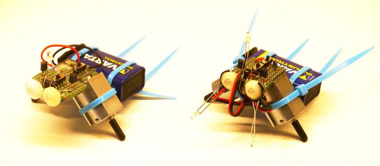 Roboter Prototypen mit Lochrasterplatinen und drei schwenkbaren Sensoren