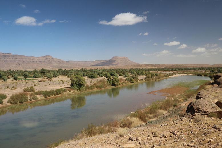 Der Draa quittiert ungeklärte Abwässer mit unkontrolliertem Algenwachstum.