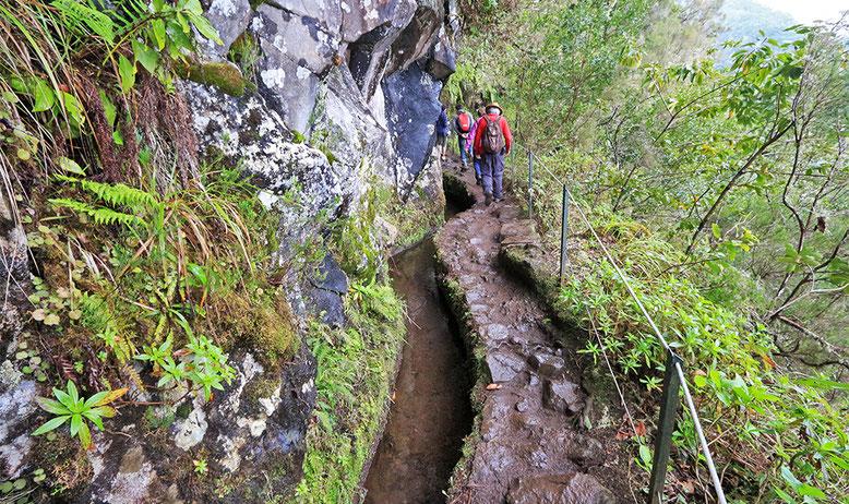 Levada entlang des Wanderweges zur Caldeirao Verde.
