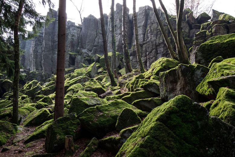 Moosbedeckter Phonolithabbruch im lichten Hochwald.