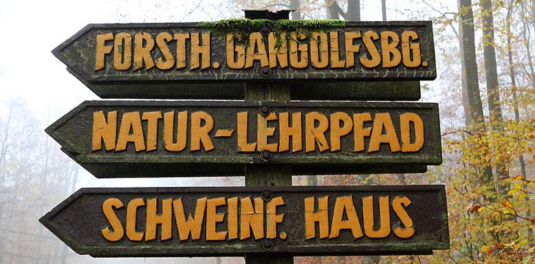 Wegweiser an der Staatsstraße St2286 zur Basaltsäulenwand über das Elsbachtal.