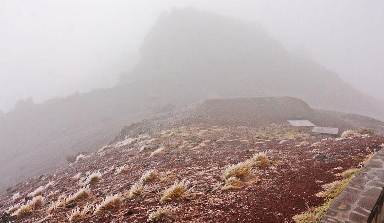 Trübe Aussichten auf dem Dach Madeiras. Feuchte Luft gepaart mit frostigen Temperaturen überziehen die Gräser mit einem Kleid aus Eiskristallen.