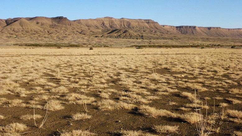 Landschaft 40 km östlich Tazzarine an der N12.