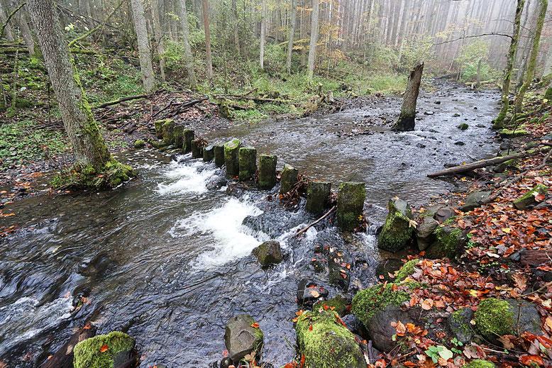 Elsbach etwas oberhalb der Brücke.