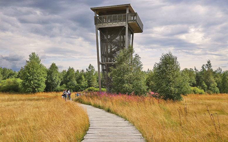 Der 17 m hohe Aussichtsturm unmittelbar nördlich des Schwarzen Moores ermöglicht einen schönen Ausblick über weite Teile des Moores und dessen Umgebung.