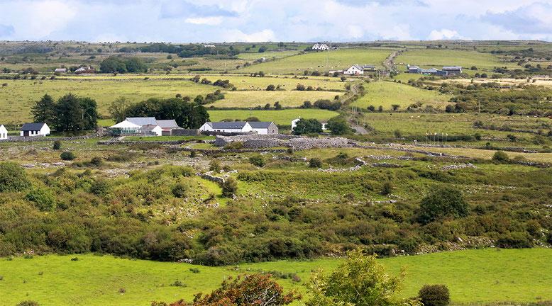 Streusiedlung Carron mit dem Ringwall des Caherconnell Stone Forts. Das Fort passt sich so harmonisch in die Landschaft ein, dass man aus der Ferne schon zweimal hinschauen muss, um es zu erkennen.