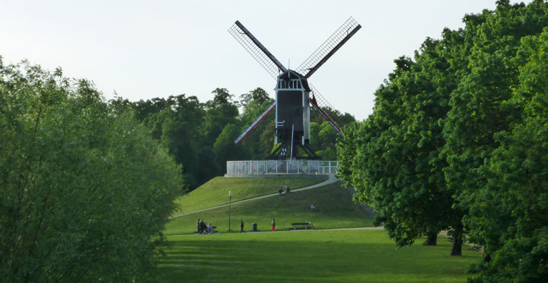 Eine von mehreren Windmühlen nördlich der Langestraat.