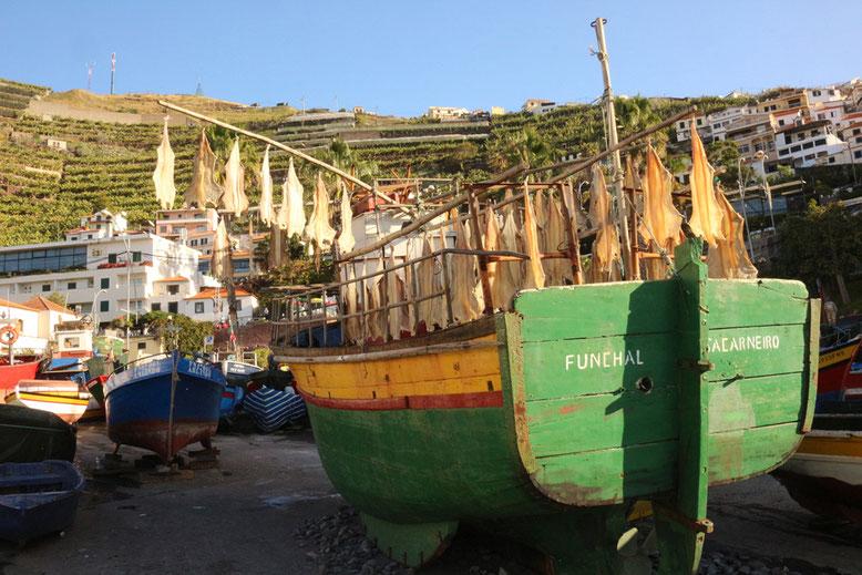 Boot mit Trockenfisch im Hafen von Câmara de Lobos.