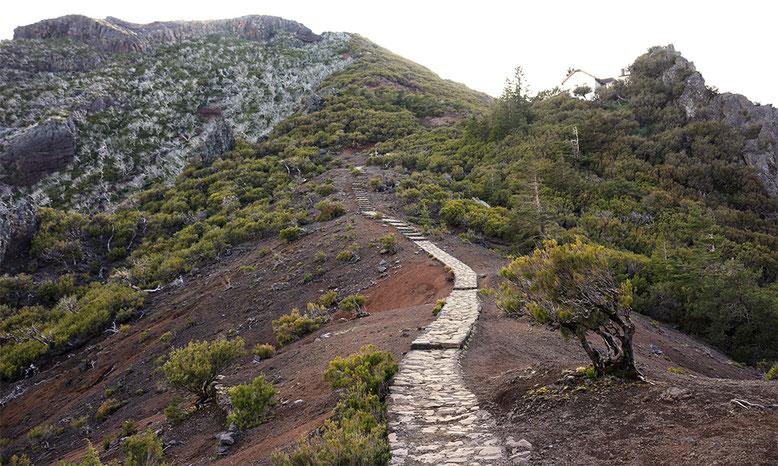 Kurz vor dem Casa do Ruivo, unterhalb des Pico Ruivo, Madeiras höchstem Berg.