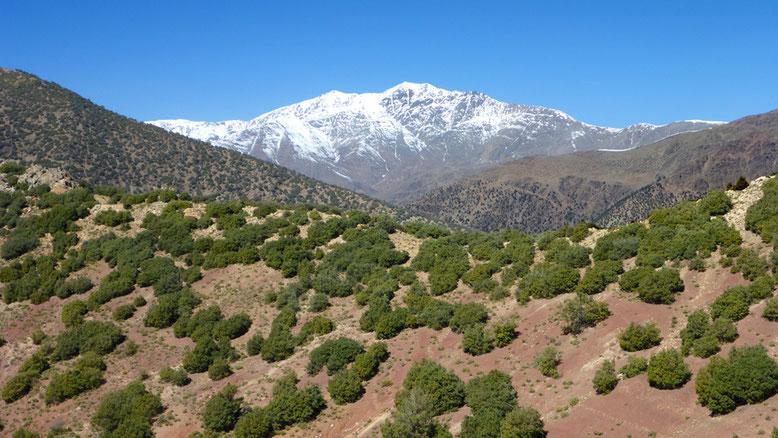 Die Passstraße zwischen Tizi-n-Test und Marrakesch verliert nach der Überquerung des Passes zunächst nur wenig an Höhe.