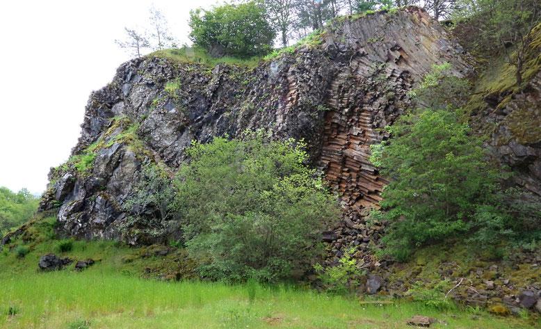 Basaltsäulenwand auf der Westseite des ehemaligen Steinbruchs.