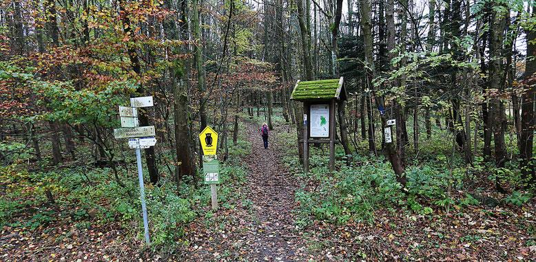 Zugang zum Schafstein an der Kreisstraße K38, ca. 1 km oberhalb der Bundesstraße 284.