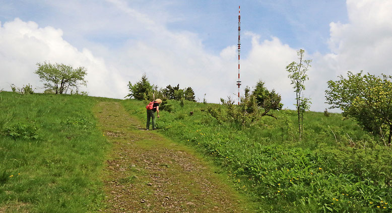 Letzter Teil des Aufstiegs zum Heidelsteinplateau.
