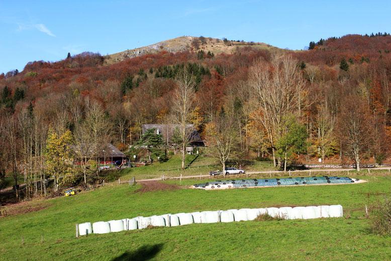 Blick vom Wanderweg oberhalb des Parkplatzes in Richtung Guckaisee und Pferdskopf.