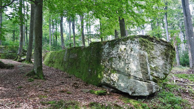 Lange Steine, ca. 1 km von den Großen Steinen entfernt.