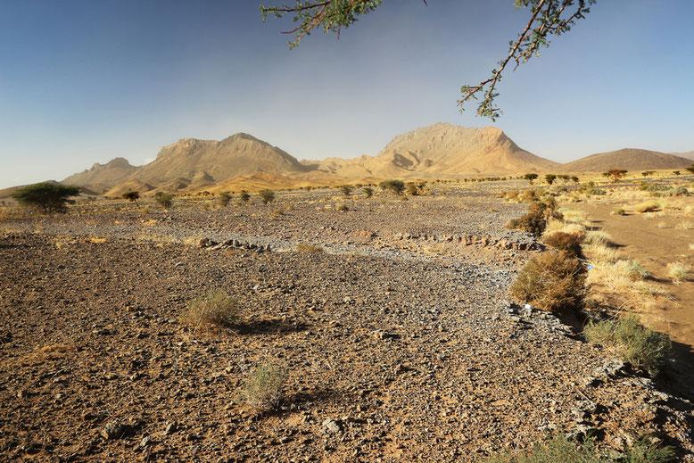 Landschaft zwischen Rissani und Tazzarine.