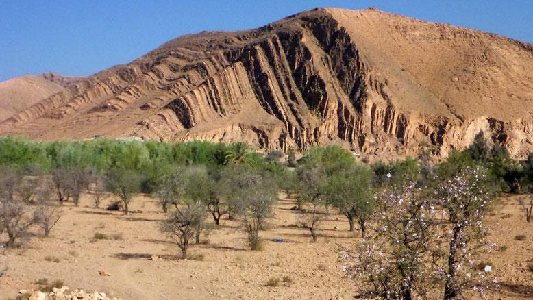 Blick vom Womo-Stellplatz der Auberge Camping Toubkal auf die Felswand auf der gegenüberliegenden Talseite.