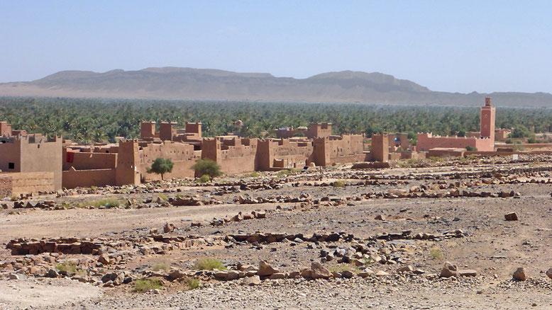 Die Ksabah Ziwana, 8 km nördlich Zagora an der N9, dahinter die Palmerien des Draa-Tals.
