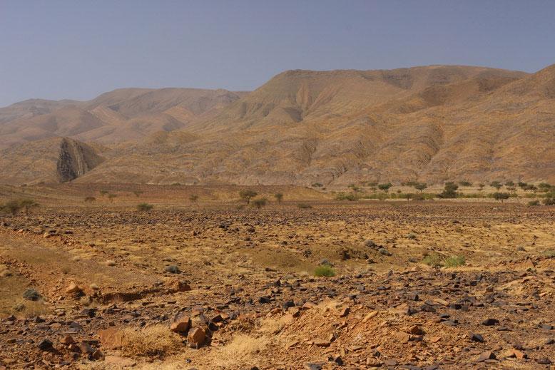Steinwüste an der R108 zwischen Agdz und Tazenakht.