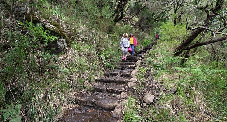 25 Quellen Wanderweg, im Hochland von Madeira.