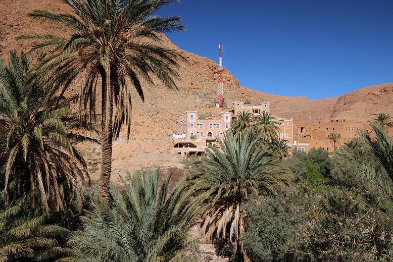 Kasbah Taborithe hinter Palmen am gegenüber liegenden Flussufer am km 11 gelegen.