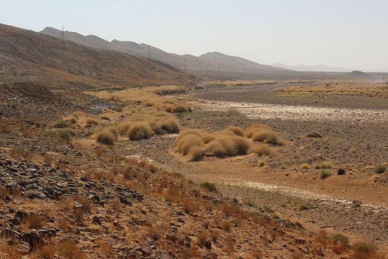 Trockental an der R108 zwischen Agdz und Tazenakht, ca. 10 km westlich Agdz.
