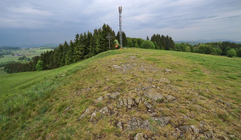 Gipfelkreuz kurz unterhalb der weitgehend kahlen Kuppe des Weiherberges.
