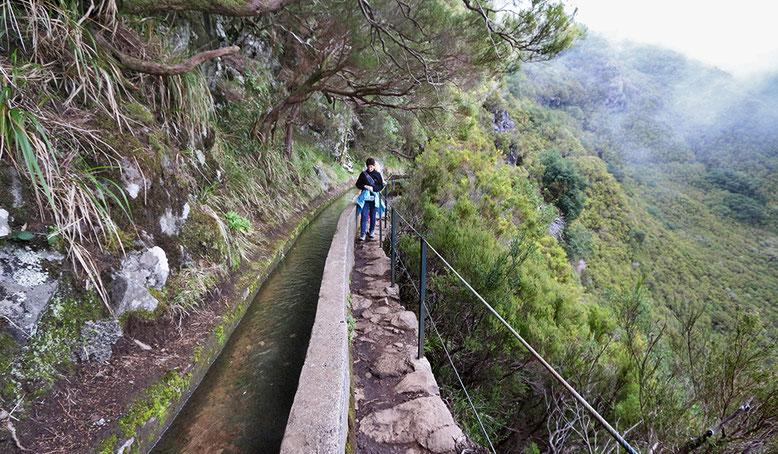 Levada entlang des 25 Quellen Wanderweges, Madeira.