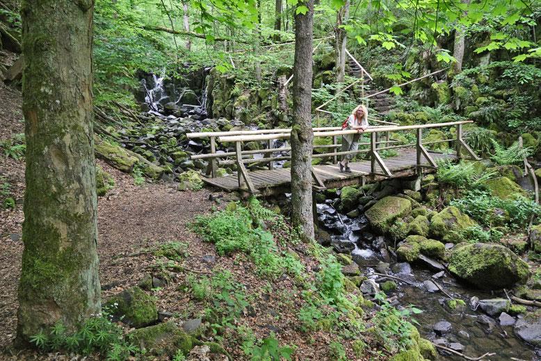 Steg unterhalb des Wasserfalls.