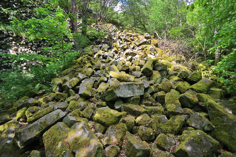 Von der Prismenwand gelöste Basaltsäulenbruckstücke formen eine kleine Blockschutthalde.