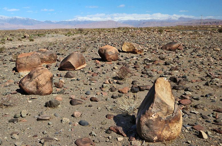 Wüstenlack, Atlasgebirge, Marokko