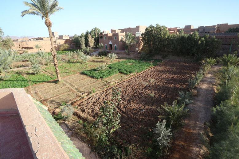 Selbst für den Anbau von Feldfrüchten ist ausreichend Platz im Innenhof der Herberge Jnane-Dar Diafa.