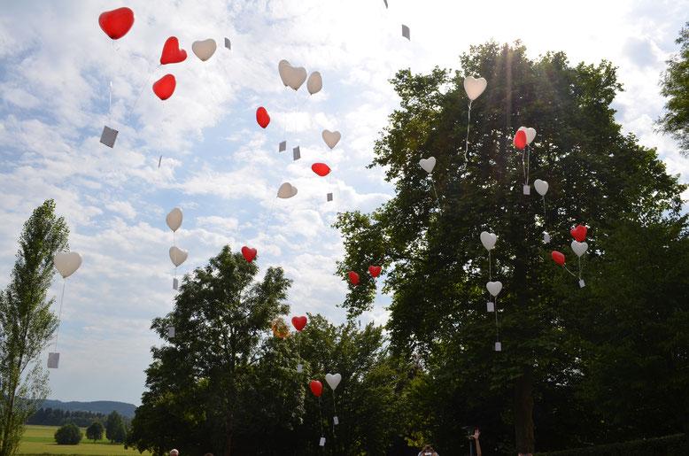 Traumworte, Maria Brendle, Traurednerin, Bodensee, Luftballons
